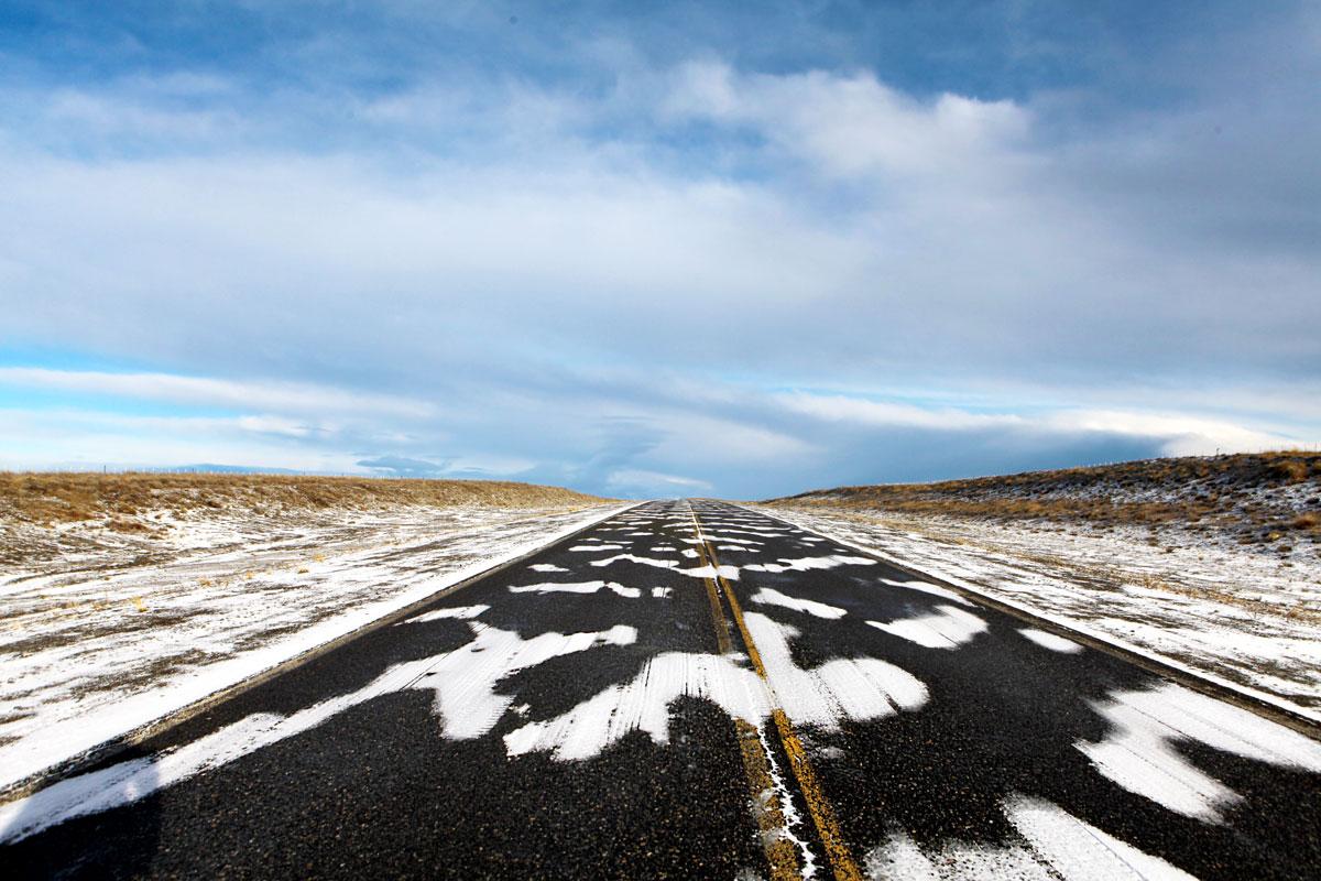 Zebra Road