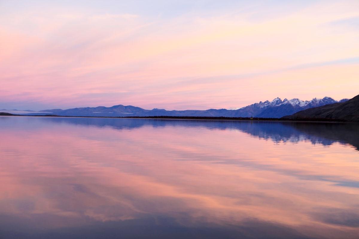 Patagonian Pink